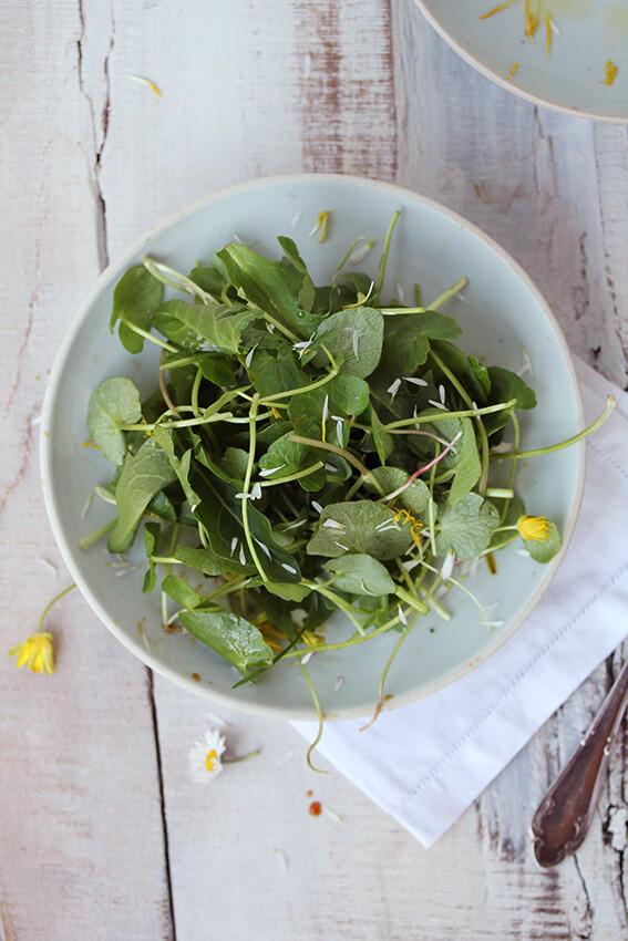 Hannah Schmitz Wildkräuter Salat