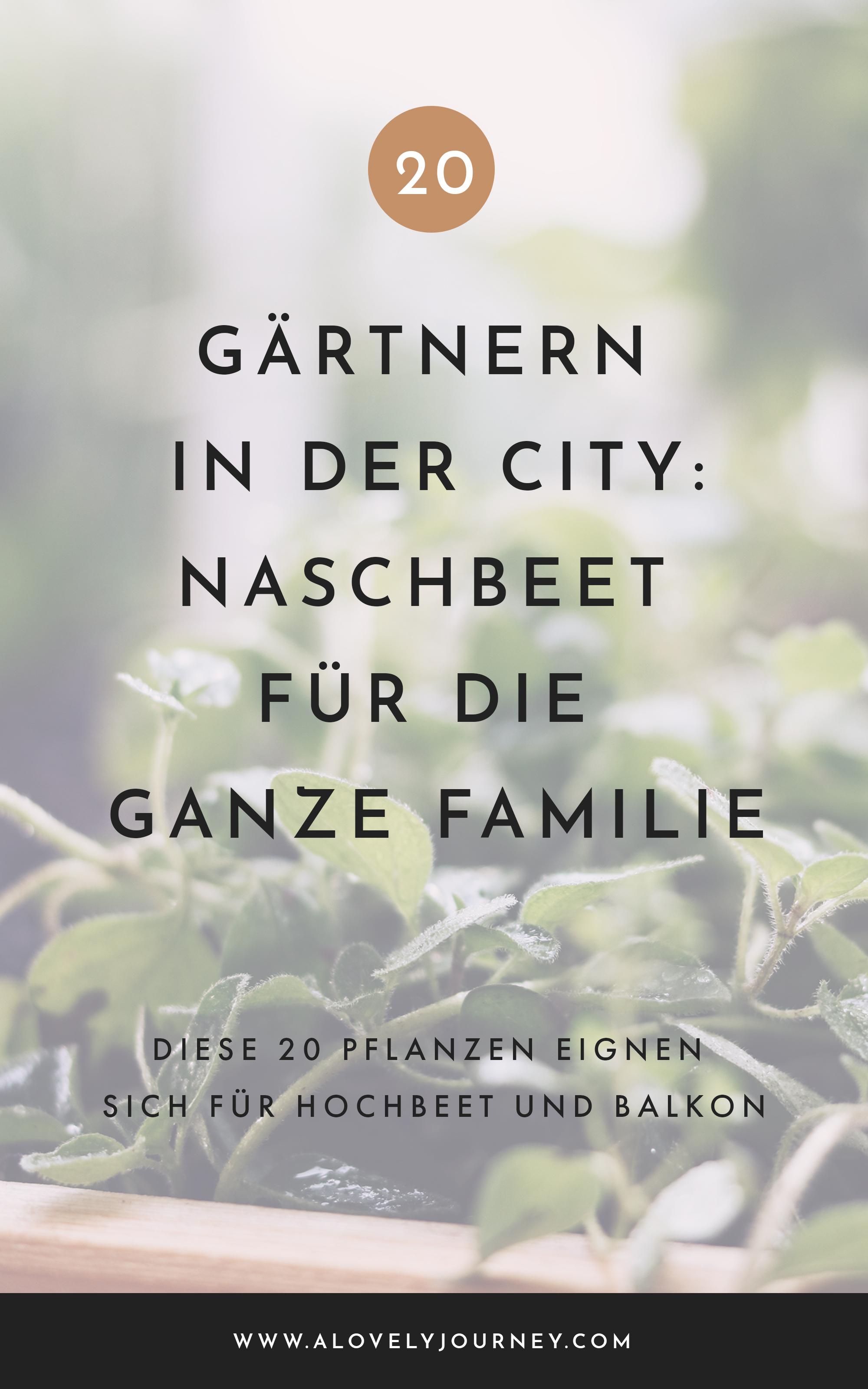 Pflanzen für Hochbeet: Naschbeet auf dem Balkon für Kinder