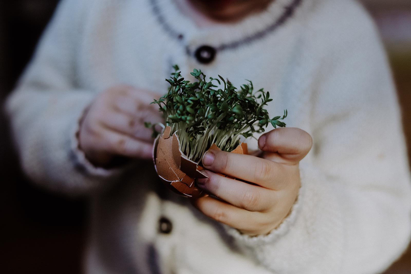 Hüter der Erde: Vom Kressegarten zum Weltverbesserer?